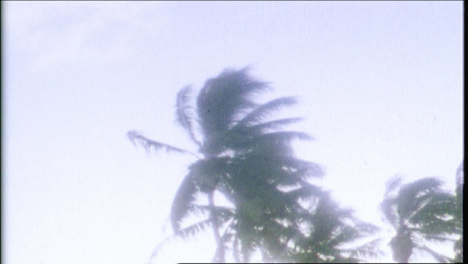 Archive-Clip-of-Atomic-Bomb-Blast-In-Tropical-Setting