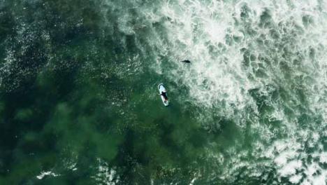 Drone-Giratorio-Shot-Mirando-Hacia-Abajo-A-La-Gente-En-El-Océano-Frente-A-La-Costa-De-Canggu