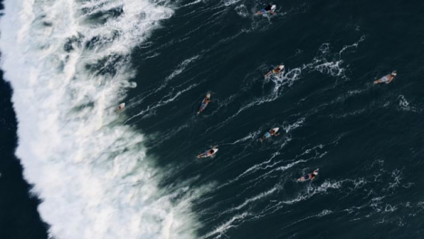 Drone-Shot-Looking-Down-On-Group-of-Surfers-Attempting-Swim-Against-Waves
