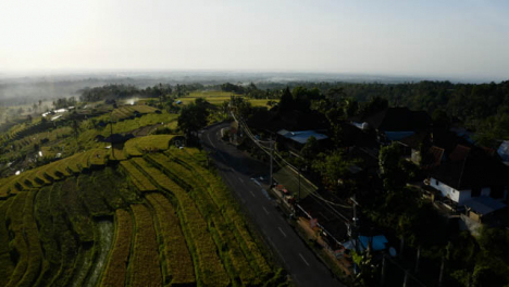 Drone-Shot-Tracking-Motorcycle-On-Road-Near-Jatiluwih-Rice-Terraces