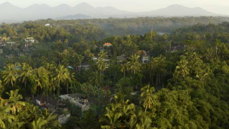 Drone-Shot-Flying-Over-Ubud-Forest-Near-Tegallalang-Rice-Terraces