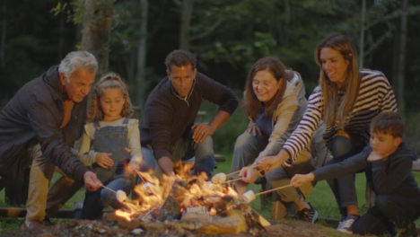 Wide-Shot-of-Family-Toasting-Marshmallows-On-Campfire