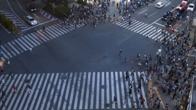 High-Angle-Shot-of-the-Famous-Shibuya-Pedestrian-Scramble-Crosswalk-with-Crowds-of-People-Crossing-and-Cars-Waiting-Evening-in-the-Big-Bright-City-