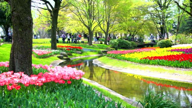Beautiful-flower-garden-in-Tokyo-Japan-