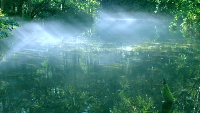 Kaminoko-estanque