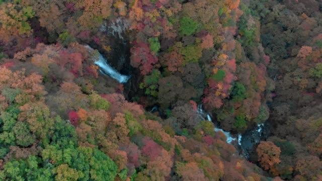 Luftaufnahme-des-Kirifuri-Wasserfall-und-im-Herbst-Laub-Nikko-Tochigi-Japan