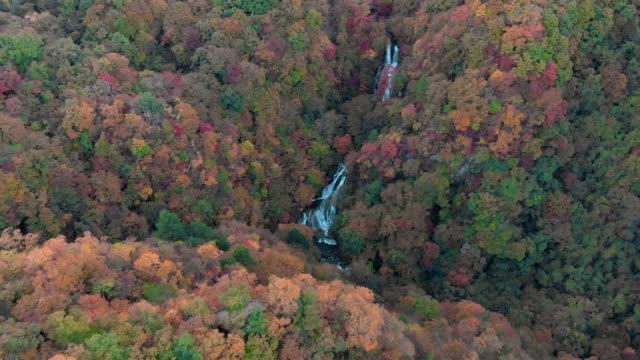 Aerial-view-of-Kirifuri-waterfall-and-autumn-foliage-Nikko-Tochigi-Japan
