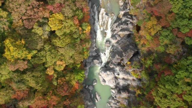 Luftaufnahme-des-Ryuokyo-Tal-und-im-Herbst-Laub-Nikko-Tochigi-Japan
