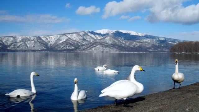 Lake-Kussharo-Hokkaido-Japan-