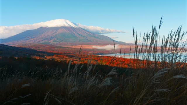 beautiful-landscape-of-Fuji-moutain-in-japan