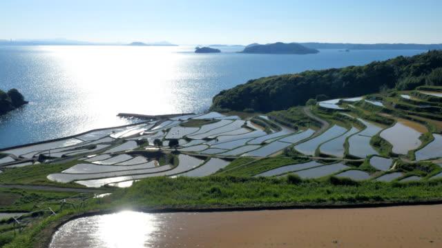 Doya-rice-terrace-in-Japan