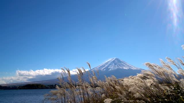 Mount-Fuji-viewed-from-Lake-Kawaguchiko-Japan