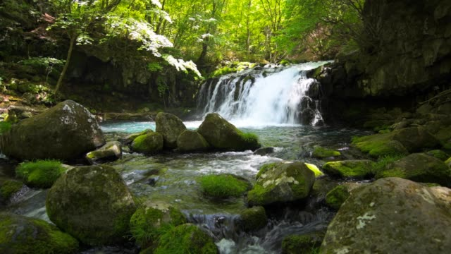 Waterfall-and-fresh-green-in-japan