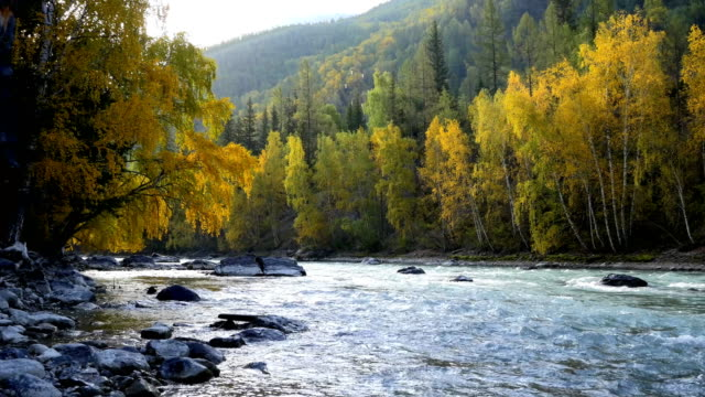 Mountain-River-and-Trees-in-Autumn-Seamless-Loop-Footage