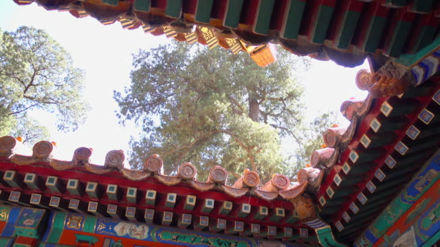 the-eaves-of-forbidden-city-on-the-hall-of-supreme-harmony