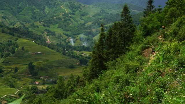Group-of-Tourists-walking-the-path-in-rice-paddy-terrace-fields-in-Sapa-Vietnam-Asia