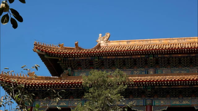 close-up-of-the-roof-of-the-forbidden-city-beijing
