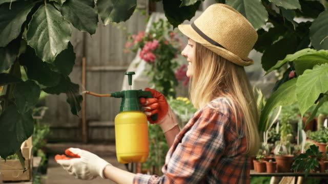 Mujer-de-rociadura-escalada-planta-en-invernadero