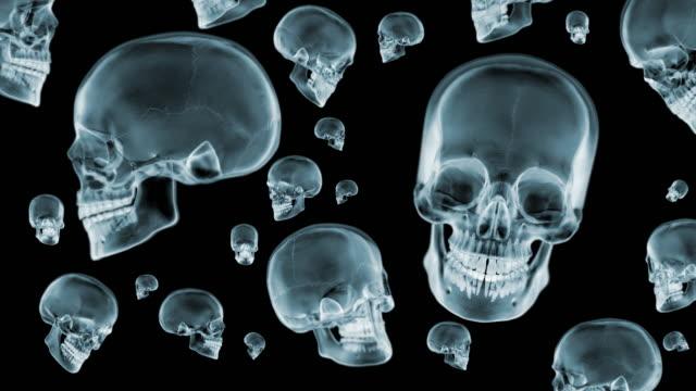 Skulls-X-Ray-spinning-Loop-3D-animation-