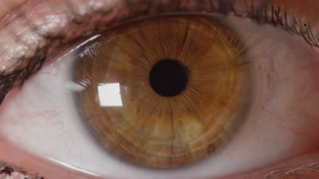 SLOW-MOTION-CLOSE-UP:-Detailed-look-at-beautiful-amber-eye-opening-and-observing