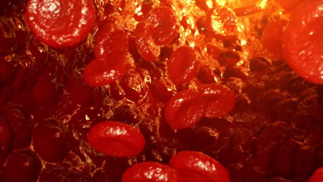Glóbulos-rojos-en-la-vena-o-arteria-fluyan-dentro-dentro-de-un-organismo-vivo-