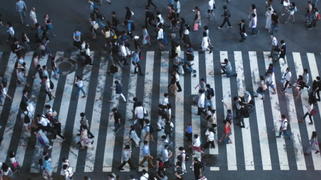 Accelerated-High-Angle-Top-Down-Shot-of-the-People-Walking-on-Pedestrian-Crossing-of-the-Road-Big-City-Crosswalk-in-the-Evening-With-Polite-Pedestrians-and-Drivers-