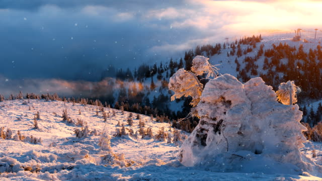 Falling-snow-in-a-winter-mountain-with-snow-covered-trees