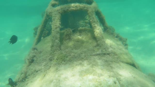 UNDERWATER:-Algae-covered-military-airplane-deteriorates-in-the-depths-of-ocean-