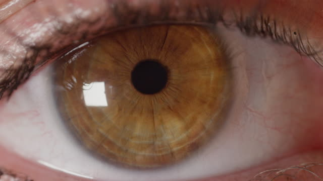 SLOW-MOTION-MACRO:-Unknown-girl-s-amber-eye-nervously-searching-left-and-right-