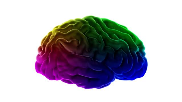 Creative-human-brain