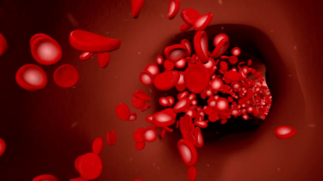 Red-blood-cells-floating-in-a-blood-vein