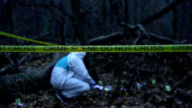 Escena-del-crimen-en-el-bosque-oscuro-experto-en-ciencias-forenses-trabajan-con-evidencia