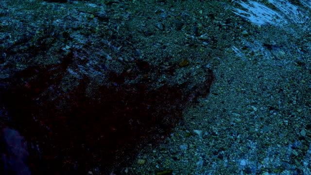Gran-cantidad-de-sangre-que-fluye-en-el-río