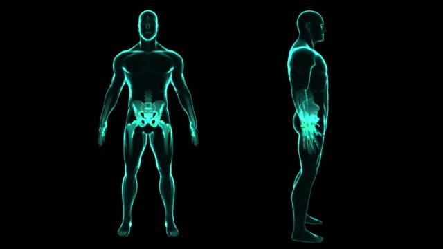 X-Ray-menschlicher-Körper-untersucht-