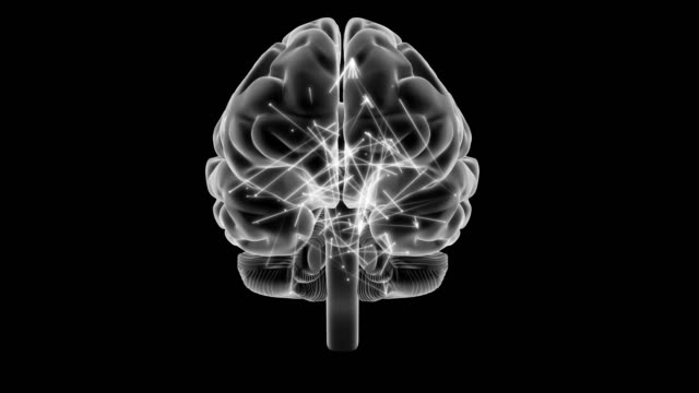 Radiografía-cerebral-de-estilo-con-impulsos-rotación-de-360-