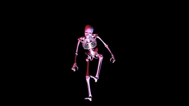Animación-de-un-esqueleto-posando