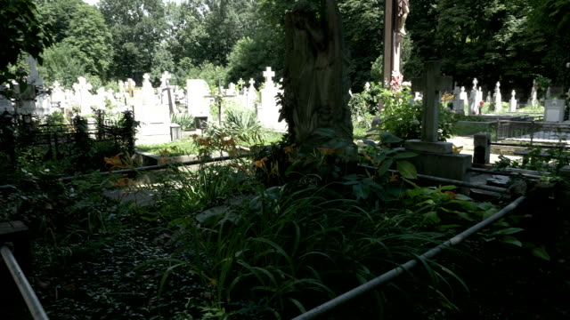 Gothic-depressed-girl-leaning-on-crying-angel-statue-in-cemetery-full-of-trees-and-vegetation-moment-of-silence