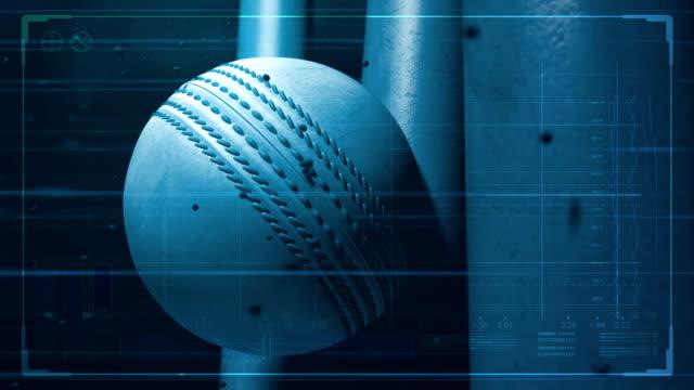 pelota-de-Cricket-golpear-wicket-con-datos-de-la-tecnología-5