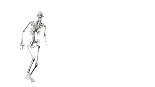 Modelo-digital-tridimensional-de-un-esqueleto-humano-blanco-sobre-un-fondo-blanco-pateando-una-pelota-