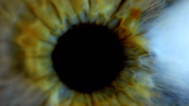 Extreme-close-up-human-eye-iris