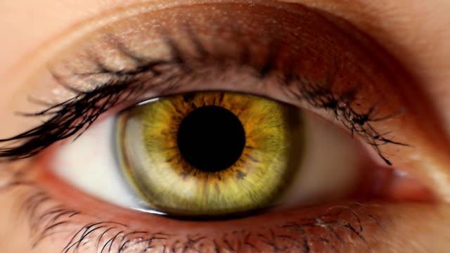 Iris-cambia-de-color-