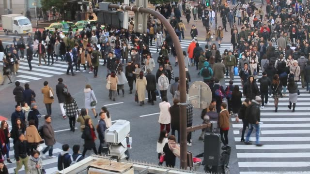 pedestrian-in-tokyo-at-zebra-crossing-road