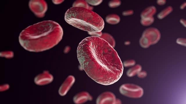 Hemoglobin-Cells