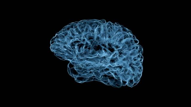 Holografische-Projektion-des-rotierenden-größeren-Teils-des-Gehirns-