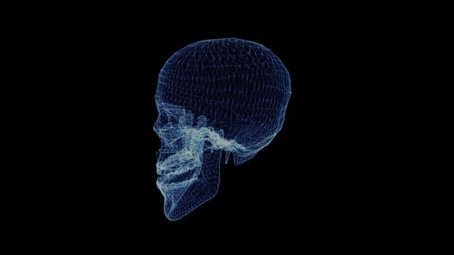 Das-Hologramm-eines-menschlichen-Schädels