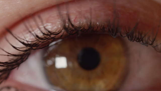 MACRO-DOF:-Mascara-wearing-girl-with-pretty-amber-eyes-stares-without-blinking-