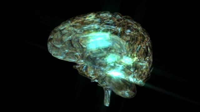 Animación-de-cerebro-humano