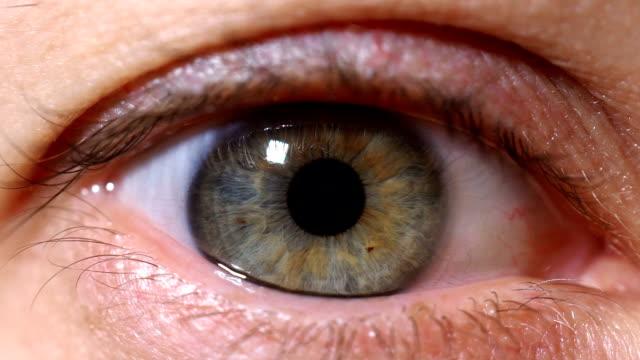 Eine-Nahaufnahme-eines-weiblichen-Auges-schmale-Augen-die-Schüler-Auge-Iris-