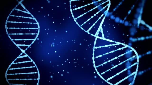 DNA-structure-(loop)