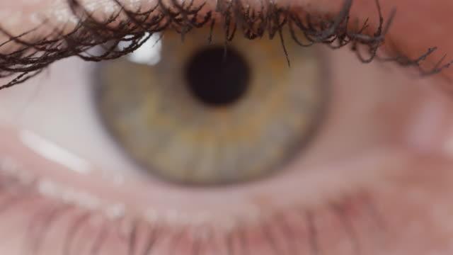 DOF-de-MACRO:-Vista-detallada-de-hermosa-tenuemente-ojo-verde-con-vetas-marrones-
